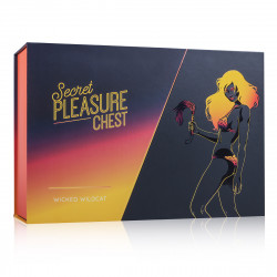 BDSM Set - Wicked Wildcat - Secret Pleasure Chest
